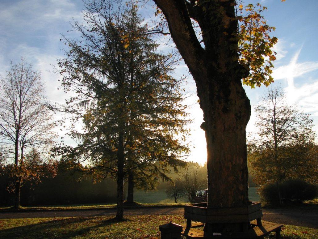 Müttertage in der Langau – im Herbst